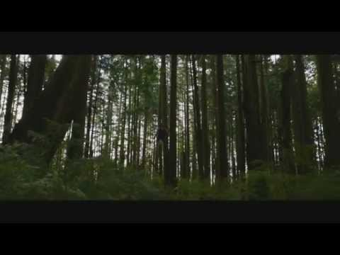 The Final Twilight Trailer. Ever. In Theory