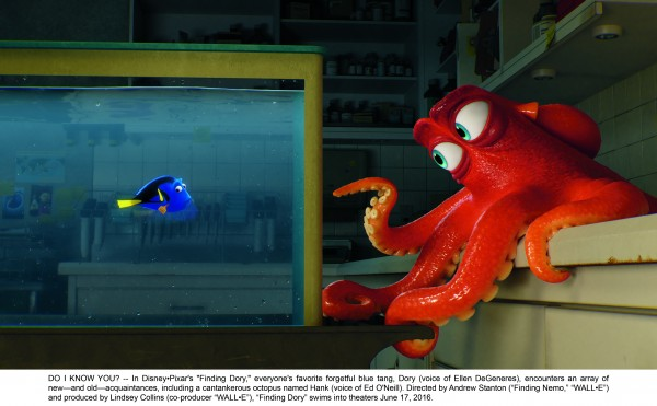 """DO I KNOW YOU? -- In Disney•Pixar's """"Finding Dory,"""" everyone's favorite forgetful blue tang, Dory (voice of Ellen DeGeneres), encounters an array of new—and old—acquaintances, including a cantankerous octopus named Hank (voice of Ed O'Neill). Directed by Andrew Stanton (""""Finding Nemo,"""" """"WALL•E"""") and produced by Lindsey Collins (co-producer """"WALL•E""""), """"Finding Dory"""" swims into theaters June 17, 2016."""