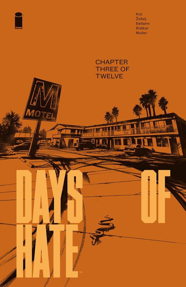 Days of Hate #3 cover by Danijel Zezelj and Tom Muller