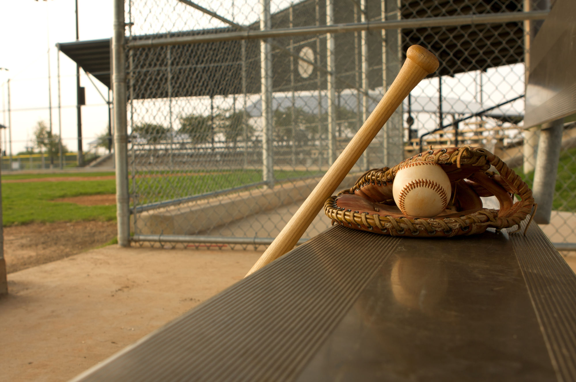 Baseball Glove, Ball, and Bat in Dugout -- David Lee/Shutterstock.com