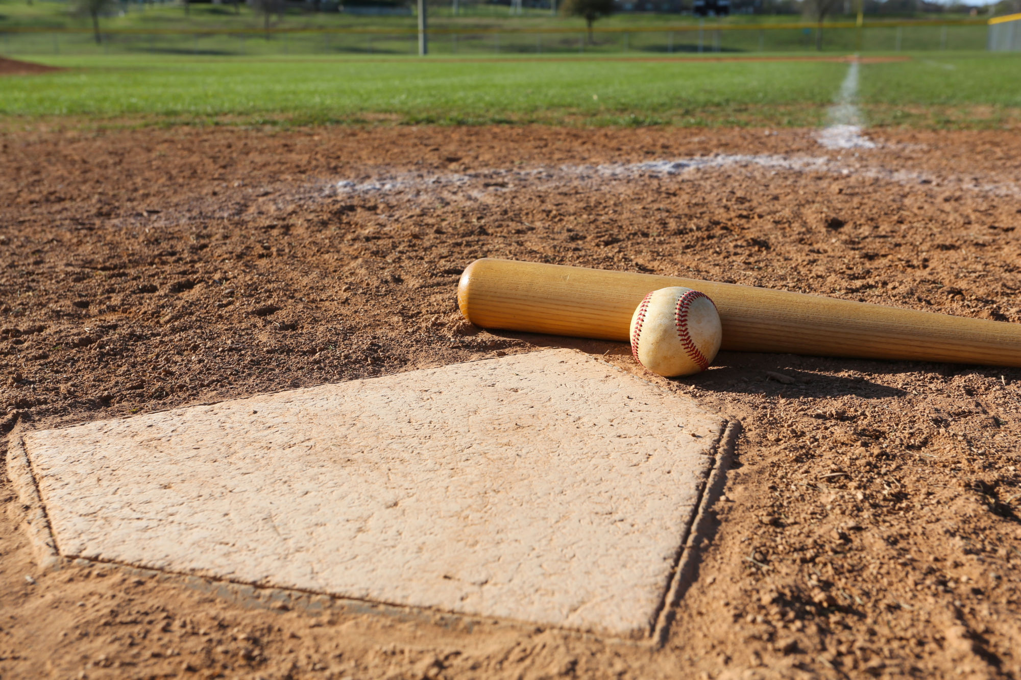 Baseball, Bat, and Home Plate -- David Lee/Shutterstock.com