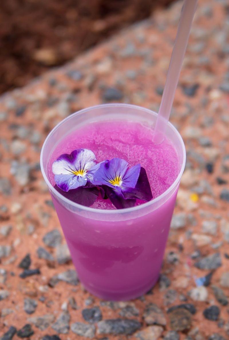 frozen desert violet lemonade epcot 2018