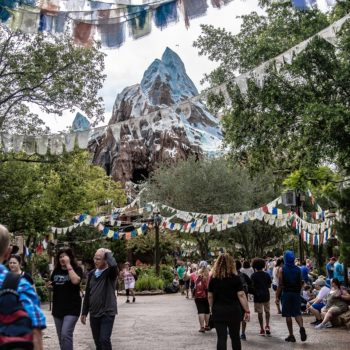 animal kingdom spring 2018