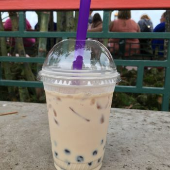 disney world epcot bubble tea
