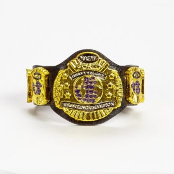 WWE Mattel Hall of Champions WCW Title