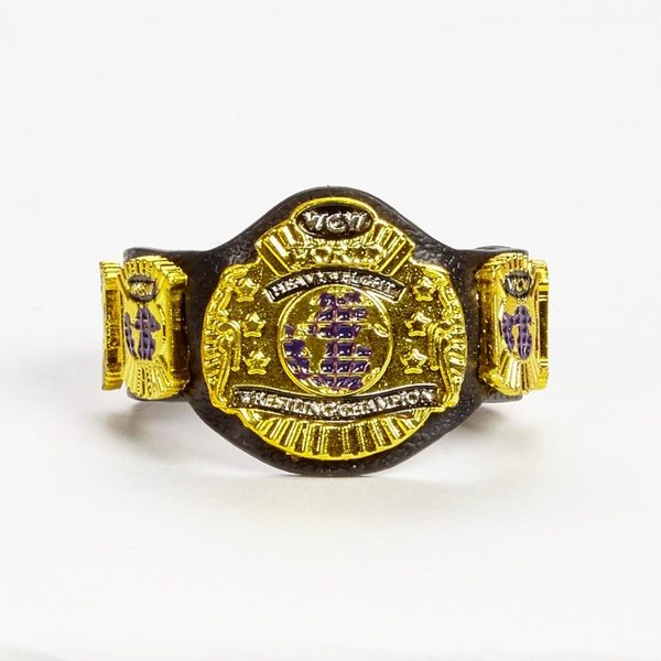 WWE Mattel Hall of Champions WCW Title