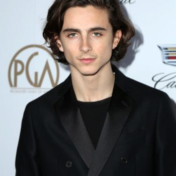 Timothée Chalamet in 2018