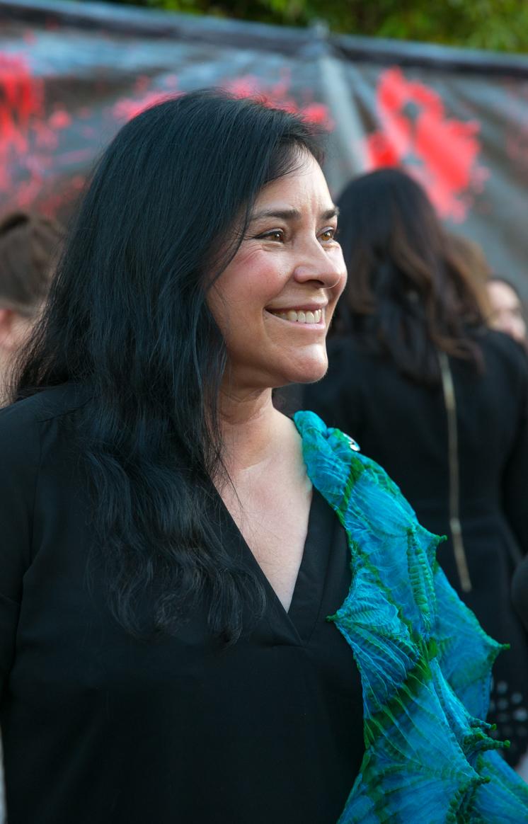 Serie Diana Gabaldon