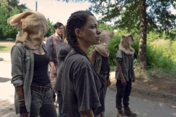 walking dead new survivors