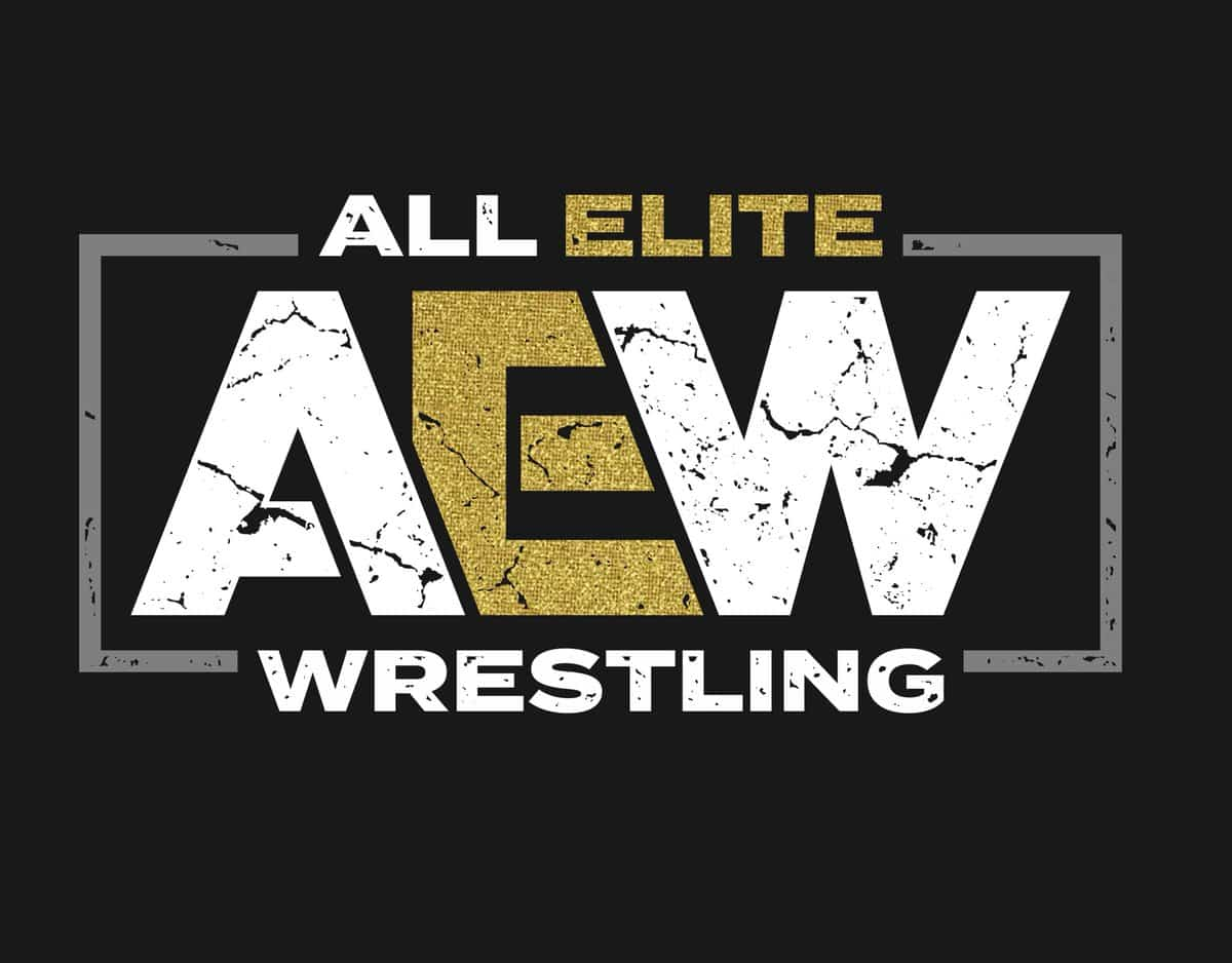 The Elite Announced All Elite Wrestling While Everyone Was Drunk on