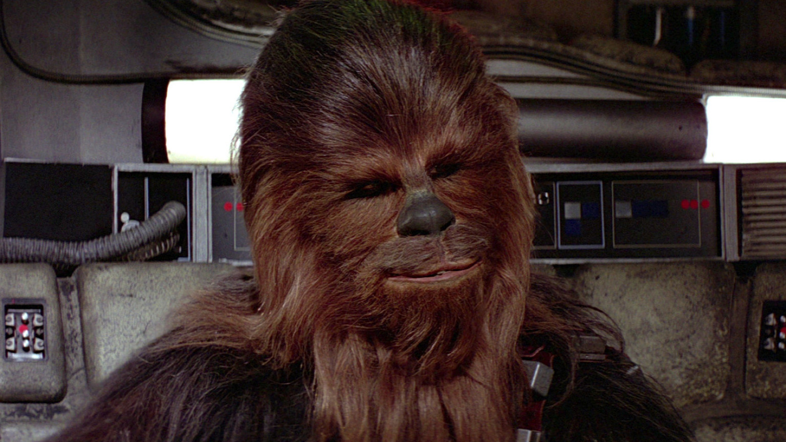 FAN EXPO Dallas Memorializes Peter Mayhew with Panel and Guest Table