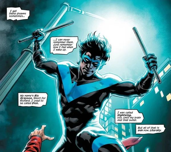 Nightwing - No Longer Ric Grayson