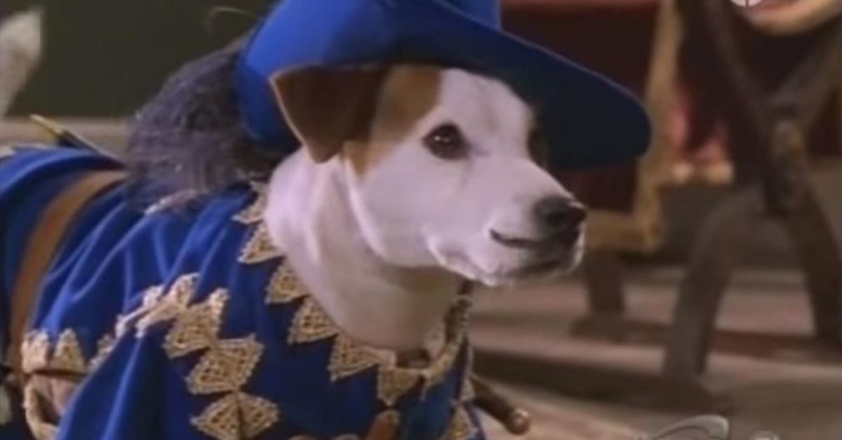 What's the Story, Wishbone? A Movie Based on the TV Show Is on the Way