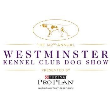 [2018 Westminster Dog Show] TV Spotlight: Herding Group